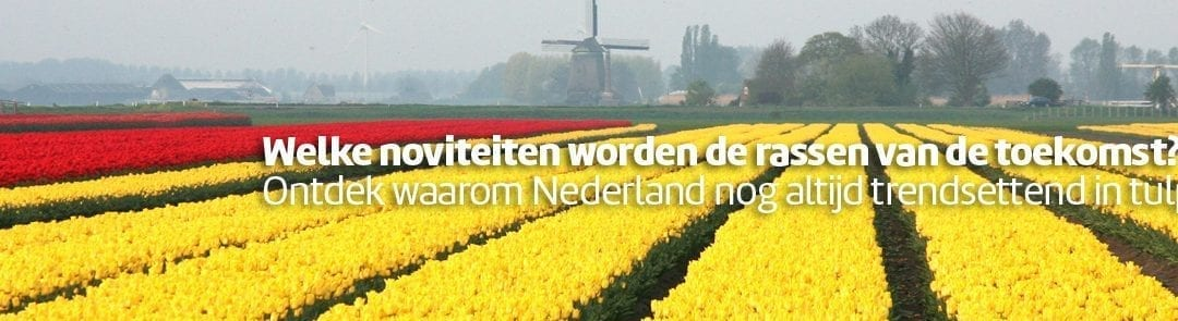War Child Tulp gedoopt tijdens opening Tulip Trade Event