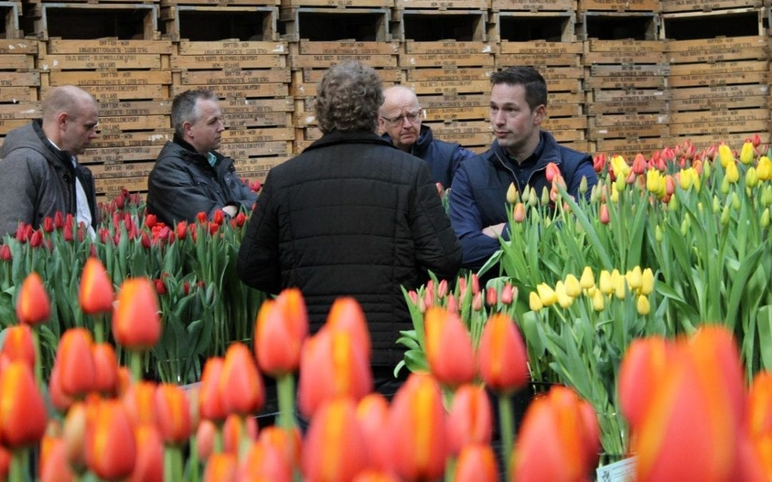 Tulip Trade Event drie jaar op rij groots succes